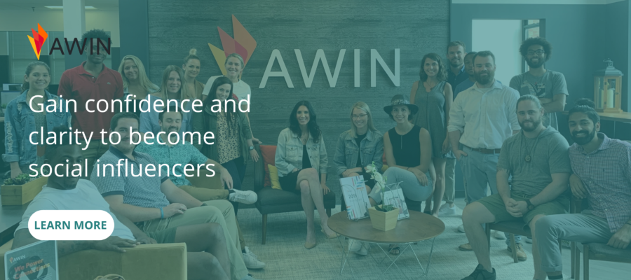 Awin Success Story Promo Panel